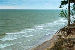 Kust för baltiskt hav, brant havskust, bevuxen kust arkivbilder