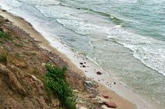 Kust för baltiskt hav, brant havskust, bevuxen kust royaltyfri fotografi