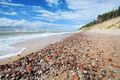 Kust för baltiskt hav i Jurkalne Arkivfoto