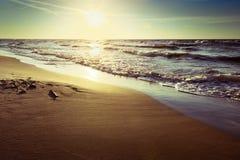 Kust för baltiskt hav med vågor som bryter på stranden på solnedgången Scenisk pittoresk sommarseascape arkivfoto