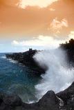 kust hawaii Arkivfoto