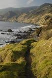 kust- Kalifornien royaltyfria bilder