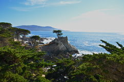 Kust- Kalifornien Royaltyfri Foto
