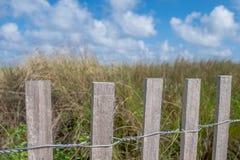 Kust- Landscape4 Arkivfoto