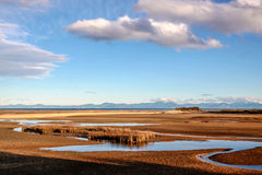Kust landschap in Abel Tasman National Park Stock Fotografie