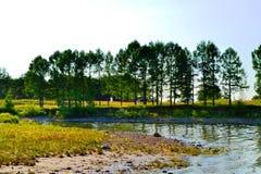 Kust- landskap Arkivfoto
