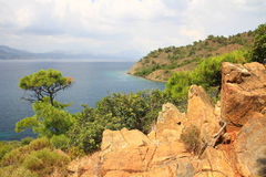 Kust- landskap av medelhavet med ett sörjaträd och röda steniga bildande Royaltyfria Bilder