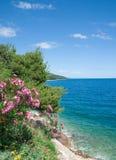 Kust- landskap, Makarska Riviera, Dalmatia, Kroatien Royaltyfri Foto