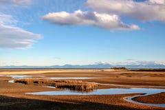 Kust- liggande i den Abel Tasman nationalparken Arkivbild