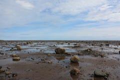Kust at low tide stock foto