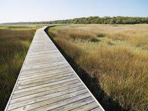 kust- marsh för boardwalk Royaltyfria Bilder