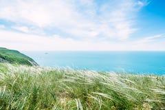 Kust met groen gras, blauwe duidelijke overzees en hemel Stock Afbeelding