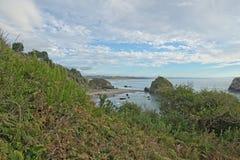 Kust nära Trinidad CA Royaltyfri Fotografi