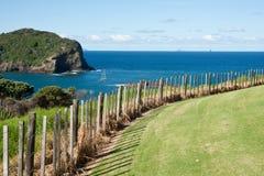 Kust Nieuw Zeeland. royalty-vrije stock foto