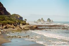 kust nya västra zealand fotografering för bildbyråer