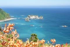 kust nya västra zealand Royaltyfri Foto