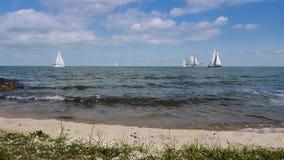 Kust och segelbåtar lager videofilmer
