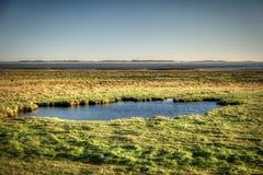 Kust op het Eiland Amrum van het Noordenfrisian royalty-vrije stock afbeeldingen