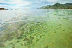 Kust overzees. Rotsen onder het water Stock Afbeeldingen