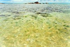 Kust overzees. Rotsen onder het water Royalty-vrije Stock Afbeelding