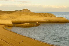kust patagonian Royaltyfri Foto