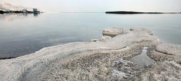 Kust Piecefull för dött hav Royaltyfria Foton