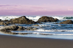 Kust- plats med vågor och ilsken himmel Arkivfoton
