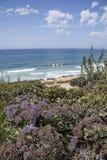 Kust- plats vid klipporna och stranden på Del Mar, San Diego, Cal Royaltyfri Fotografi