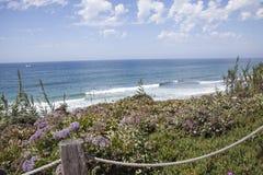 Kust- plats vid klipporna och stranden på Del Mar, San Diego, Cal Fotografering för Bildbyråer