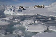 Kust- remsa av små isberg och fryst Antarktis för is öar Arkivfoto