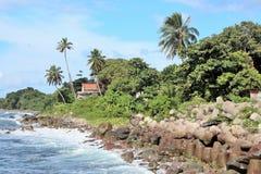 Kust- sikter av en tropisk karibisk ö Fotografering för Bildbyråer