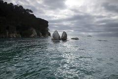 Kust- sikter och vaggar av Nya Zeeland D Y Arkivbild