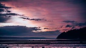 kust- solnedgång arkivfilmer
