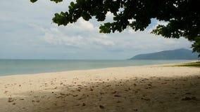Kust som tvättas av blått tyst vatten exotiskt landskap för idylliskt tropiskt paradis av den sandiga kusten som täckas med grönt lager videofilmer