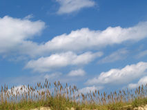 kust- sommartranquility Arkivbilder