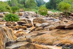 Kust Tana River tussen parken Meru en Kora Kenia, Afrika Royalty-vrije Stock Foto's