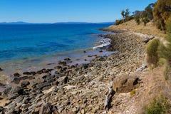 kust tasmania Fotografering för Bildbyråer