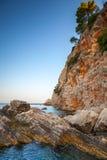 Kust- vaggar med sörjer träd. Adriatiskt hav royaltyfri fotografi