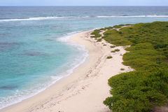 Kust van Barbuda Stock Foto's