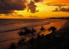 Kust van de tropische oceaan na zonsondergang stock fotografie