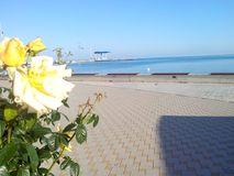 Kust van de Zwarte Zee Stock Foto