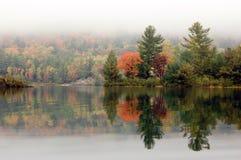 Kust van George Lake Royalty-vrije Stock Foto