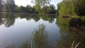Kust van het meer, de vroege lente Royalty-vrije Stock Fotografie