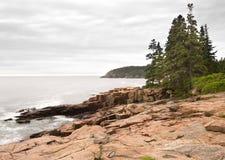 Kust van het Park van Acadia de Nationale Stock Fotografie