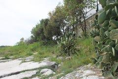 Kust van Kassiopi, Griekenland stock afbeeldingen