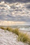 Kust van Oostzee met donkere wolken stock fotografie
