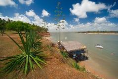 Kust van Tibau do Sul dichtbij pipa Brazilië royalty-vrije stock afbeelding