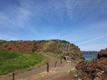 Kust wandelingssleep in San Francisco Bay, Californië Royalty-vrije Stock Afbeelding