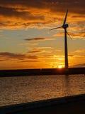 Kust- Windturbin Royaltyfri Fotografi