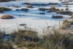 Kust zout moeras.  Montenegro Stock Afbeelding